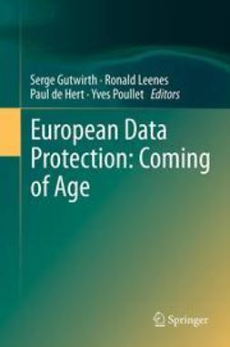 Gutwirth, Serge - European Data Protection: Coming of Age, e-kirja