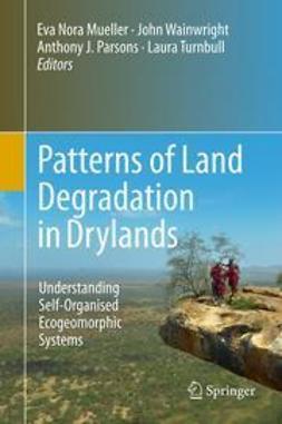 Mueller, Eva Nora - Patterns of Land Degradation in Drylands, ebook