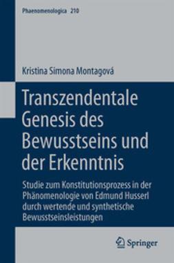 Montagová, Kristina Simona - Transzendentale Genesis des Bewusstseins und der Erkenntnis, ebook