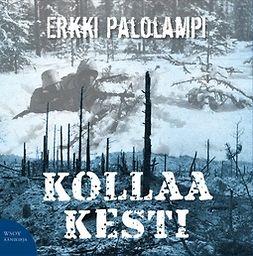 Palolampi, Erkki - Kollaa kestää, audiobook