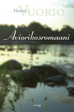 Vuorio, Hannu - Aviorikosromaani, ebook