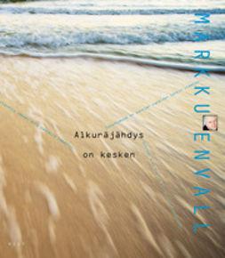 Envall, Markku - Alkuräjähdys on kesken, ebook