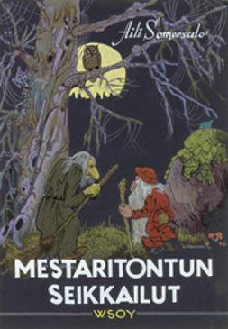 Somersalo, Aili - Mestaritontun seikkailut, ebook