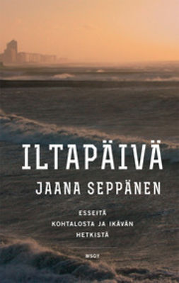 Seppänen, Jaana - Iltapäivä, ebook