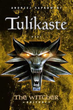Sapkowski, Andrzej - Tulikaste: The Witcher - Noituri 5, e-kirja