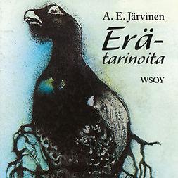 Järvinen, A. E. - Erätarinoita, audiobook