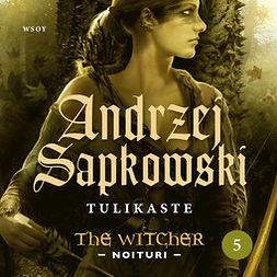 Sapkowski, Andrzej - Tulikaste: The Witcher - Noituri 5, äänikirja