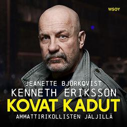Björkqvist, Jeanette - Kovat kadut: Ammattirikollisten jäljillä, äänikirja