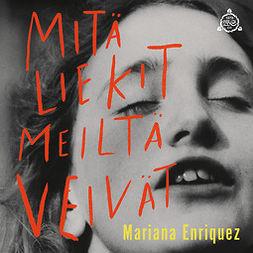 Enriquez, Mariana - Mitä liekit meiltä veivät, äänikirja