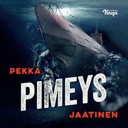 Jaatinen, Pekka - Pimeys, audiobook