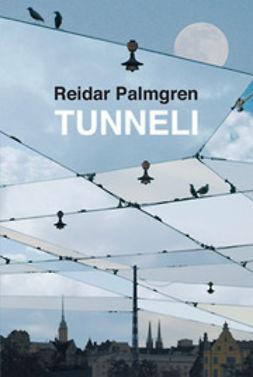 Palmgren, Reidar - Tunneli, e-kirja