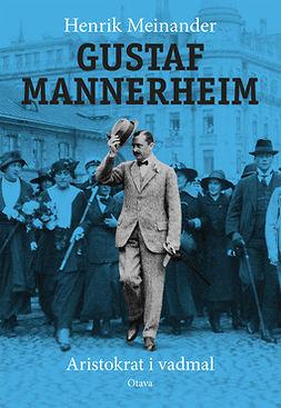 Meinander, Henrik - Gustaf Mannerheim (ruotsinkielinen): Aristokrat i vadmal, e-kirja
