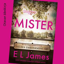 James, E L - Mister, audiobook