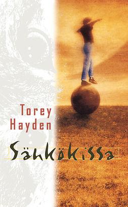 Hayden, Torey - Sähkökissa, ebook