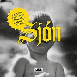 Sjón - Maissinkeltaiset hiukset, harmaat silmät, äänikirja