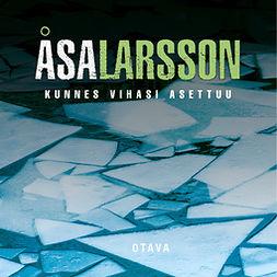 Larsson, Åsa - Kunnes vihasi asettuu, audiobook