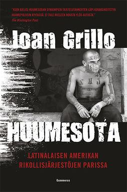 Grillo, Ioan - Huumesota: Latinalaisen Amerikan rikollisjärjestöjen parissa, e-kirja