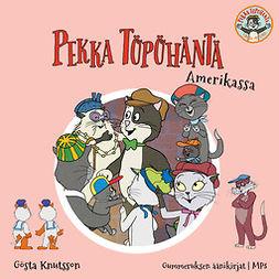Knutsson, Gösta - Pekka Töpöhäntä Amerikassa, äänikirja