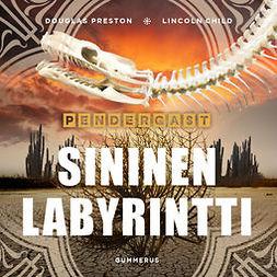 Preston, Douglas - Sininen labyrintti, äänikirja