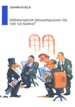 Kivelä, Juhani - Valtiokonsernin talousohjauksen tila -tuki vai taakka?, e-kirja