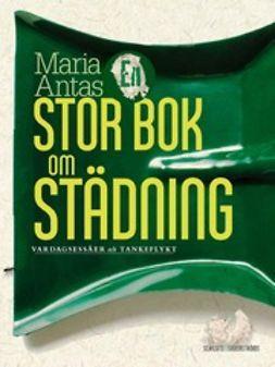 Antas, Maria - En stor bok om städning, ebook