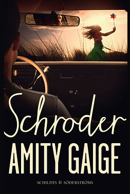 Gaige, Amity - Schroder, e-bok