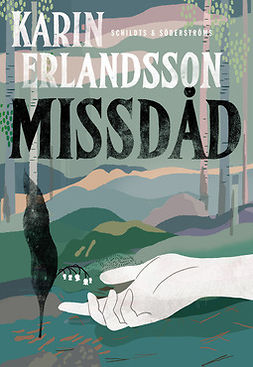 Erlandsson, Karin - Missdåd, ebook