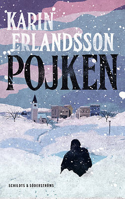 Erlandsson, Karin - Pojken, ebook