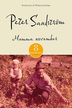 Sandström, Peter - Mamma november: Åtta betraktelser, ebook