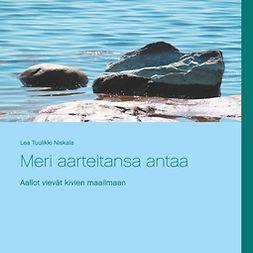 Niskala, Lea Tuulikki - Meri aarteitansa antaa: Rantakivien ihmeellinen maailma, e-bok
