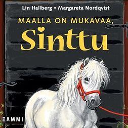 Hallberg, Lin - Maalla on mukavaa, Sinttu, äänikirja