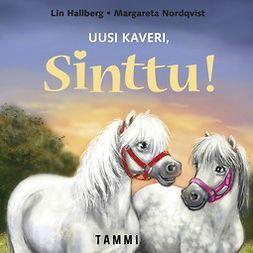 Hallberg, Lin - Uusi kaveri, Sinttu!, äänikirja