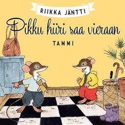 Jäntti, Riikka - Pikku hiiri saa vieraan, audiobook