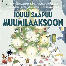 Heikkilä, Pirjo - Joulu saapuu Muumilaaksoon, audiobook