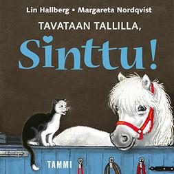 Hallberg, Lin - Tavataan tallilla, Sinttu!, äänikirja