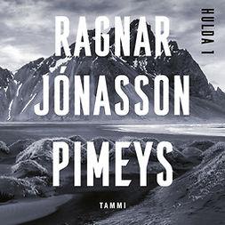 Jónasson, Ragnar - Pimeys, äänikirja