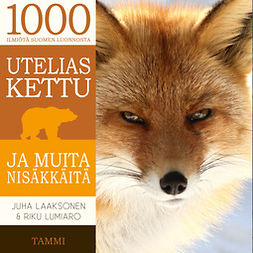 Laaksonen, Juha - Utelias kettu ja muita nisäkkäitä, äänikirja