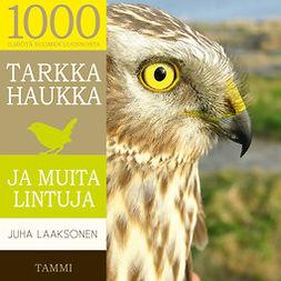 Laaksonen, Juha - Tarkka haukka ja muita lintuja, äänikirja