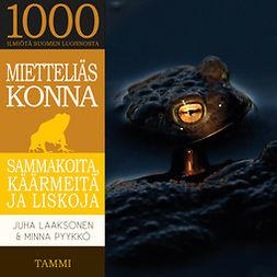 Laaksonen, Juha - Mietteliäs konna: Sammakoita, käärmeitä ja liskoja, audiobook