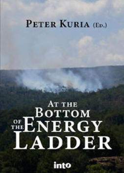 Kuria, Peter - At the bottom of the energy ladder, e-bok