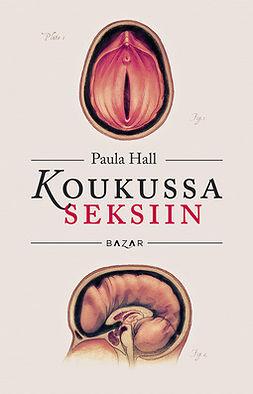 Hall, Paula - Koukussa seksiin, ebook