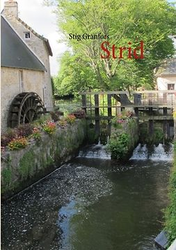 Granfors, Stig - Strid, ebook