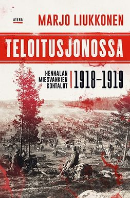Teloitusjonossa: Hennalan miesvankien kohtalot 1918-1919