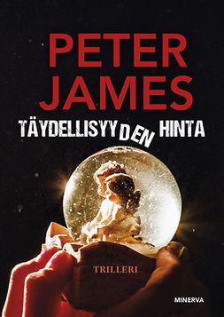James, Peter - Täydellisyyden hinta, e-kirja