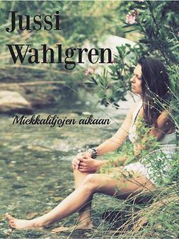 Wahlgren, Jussi - Miekkaliljojen aikaan, e-kirja