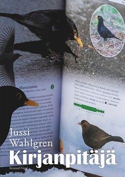 Wahlgren, Jussi - Kirjanpitäjä, e-kirja