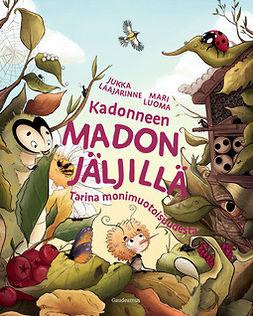 Laajarinne, Jukka - Kadonneen madon jäljillä: Tarina monimuotoisuudesta, ebook