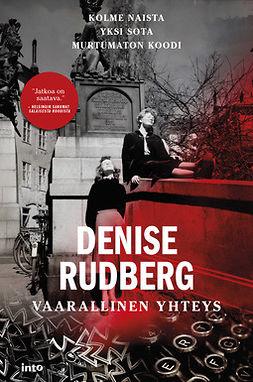 Rudberg, Denise - Vaarallinen yhteys, e-kirja
