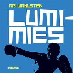 Wahlsten, Ari - Lumimies, audiobook