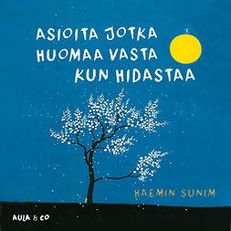 Sunim, Haemin - Asioita jotka huomaa vasta kun hidastaa, audiobook